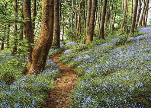 Bluebells, Haslost Wood II -Lancashire. Keith Melling