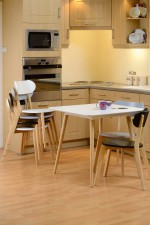 Julian modern dining set with 4 chairs