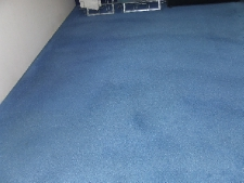 restored carpet colour
