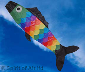 SOC008 Giant Fish Wind Sock