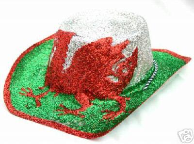 cb2a7e30fe4 COW20 Welsh Glittery Cowboy Hat