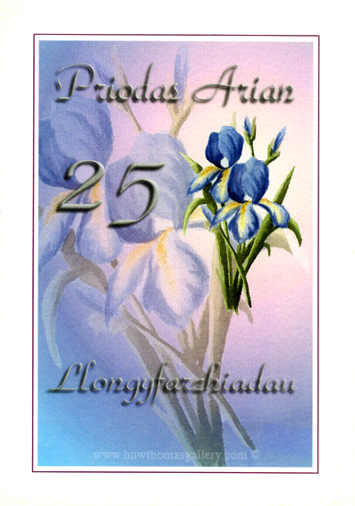 Silver (25th) Wedding Anniversary Card in Welsh - Priodas Arian