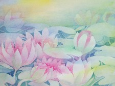 ''waterlilies 1''  Print