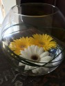 goldfish style vases with floating Gerberas