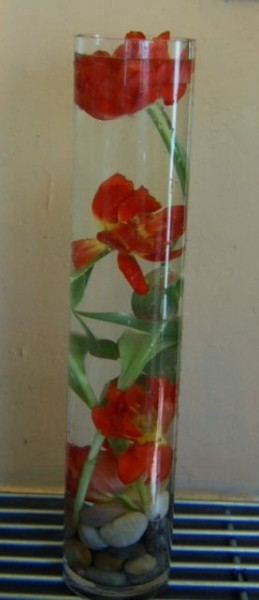 Tall Slim Vase Tulips Under Water