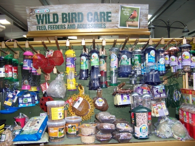 wildbird care
