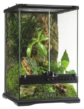Natural Terrarium Mini/Tall