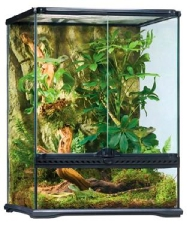 exo terra small tall terrarium