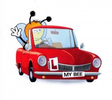 BuzzMe2Drive Driving School