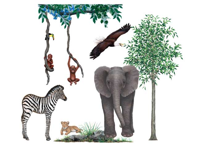 Giant Jungle Animal Wall Stickers   Hand Drawn Style Part 58
