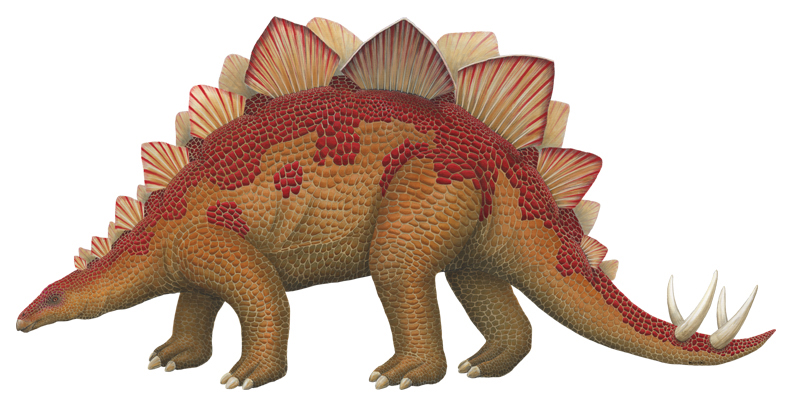Dinosaur Stegosaurus wall sticker small