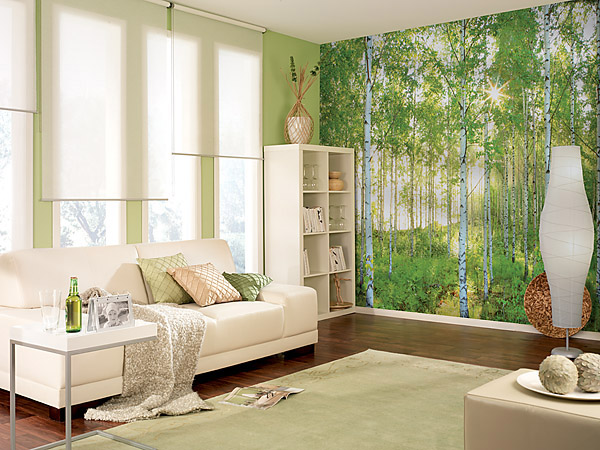 PM-Sunday-8519-B Digital Photo Mural - Forest Sunday