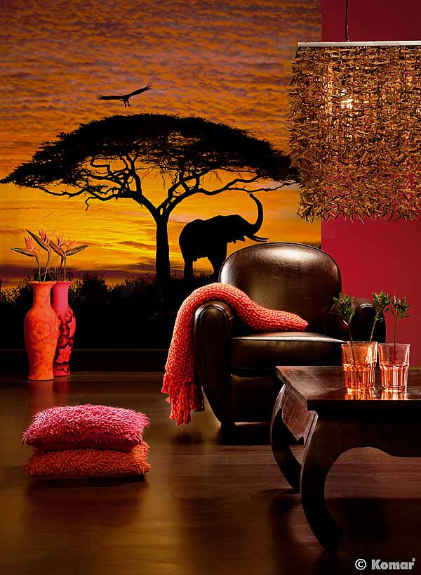 PM-4-501-D African Sunset wall mural