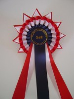 Champion rosette with stars