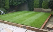 Small and Tidy Lawn