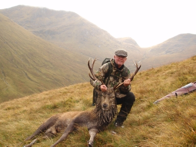 Strathcarron highland red stag stalking.