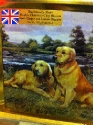 Golden Retriever Tin