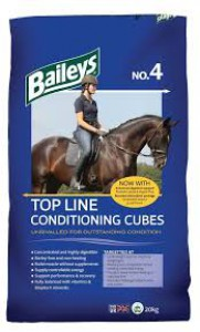 Bailey's No.4 Top Line Conditioning Cubes £12.50