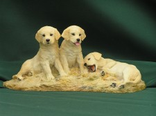 Labrador puppies �75.00