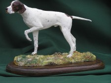 English Pointer �110.00