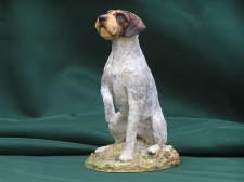 German Wired haired Pointer sitting �85.00
