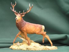 Red Deer Stag �275.00