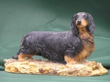 Long haired Dacshund �65.00