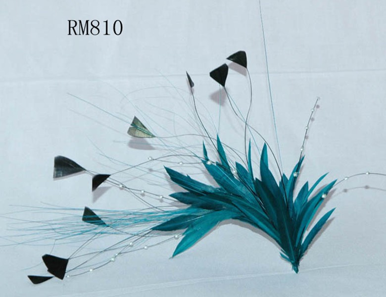 Feather Mount RM810
