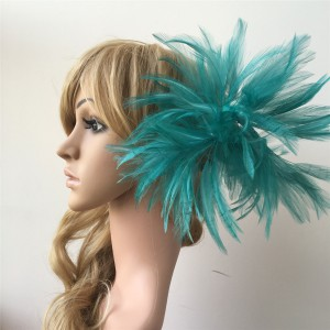 Feather Mount RM203