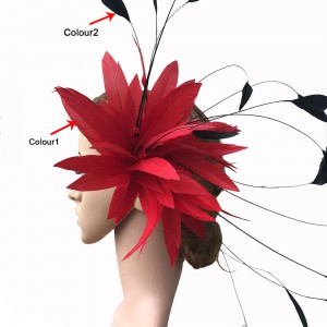 Feather Mount RM704