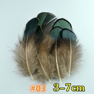 FEA1021-#3 50Pcs/packet Natural Pheasant Feathers for Millinery Hat Making Headpiece Handcrafts DIY