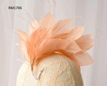 Feather Mount RM1706