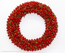 Festive Soap Nut Wreath