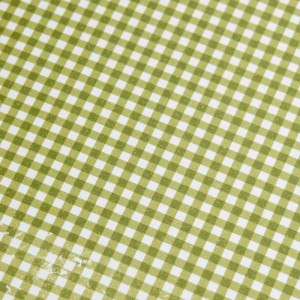 A4 240gsm Gingham Lime Green Design Card
