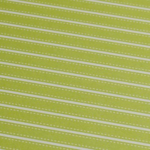 A4 240gsm Stripes Indian Ivy Design Card