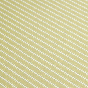 A4 240gsm Stripes Lime Green Design Card