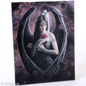 Angel Rose Canvas