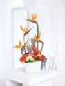 strelitzia (bird of paradise arrangement