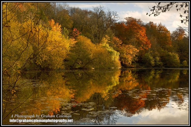 Reflections of Autumn Trees at Cherington. landscape pictures of the Cotswolds by Graham Coleman