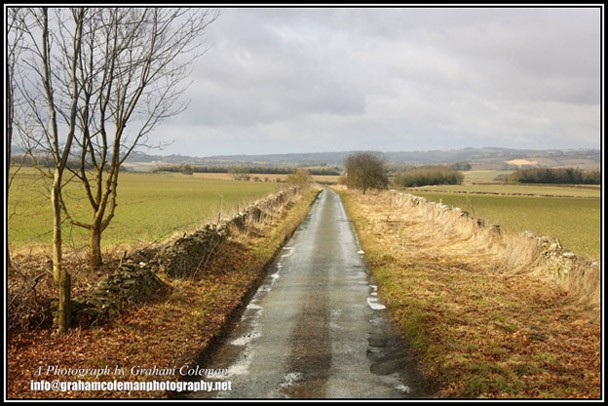 Country road in the cotswold landscape