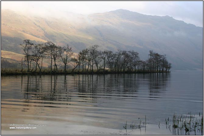 Trees on the water, Loch Lomond an original photograph by Graham Coleman from the Landscapes of Scotland collection.
