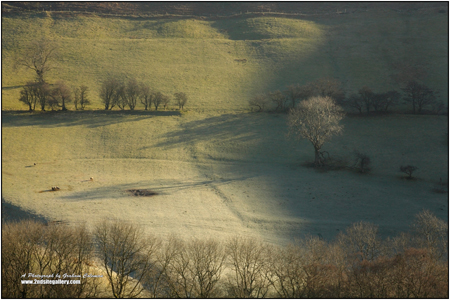 A frosty morning on the foothills of the black mountains in wales