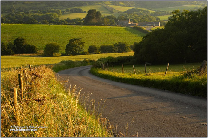 Country Road Dorset