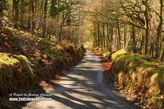 Country lane, Exmoor