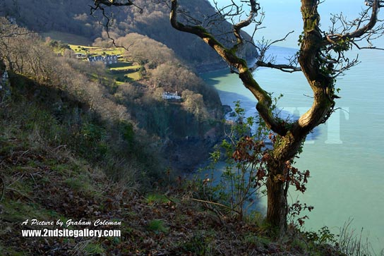 woody bay exmoor