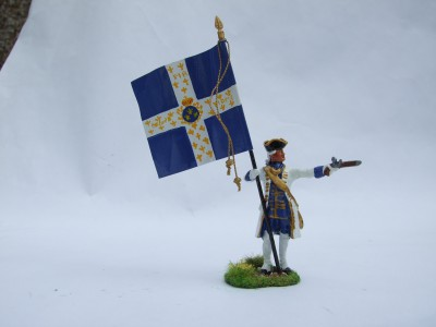 STANDARD BEARER SECOND COLOUR REG DAUPHINE