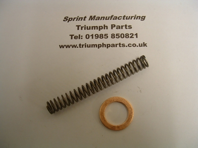 Cam chain tensioner spring