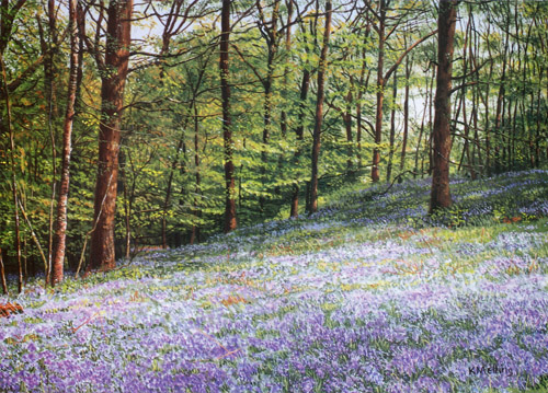 Bluebells, Jeffy Knotts Wood. Painting by Keith Melling