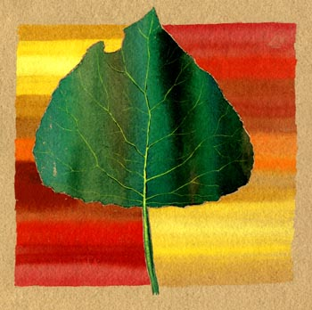 A Leaf from My Sketchbook. Keith Melling