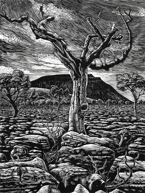 Ingleborough from Southerscales Scars, Yorkshire Dales. Wood Engraving Keith Melling